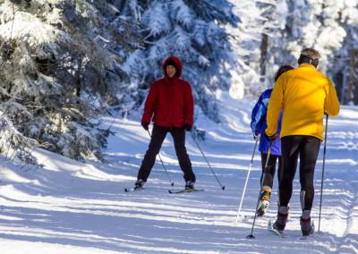 Běžkařské trasy Schoneben
